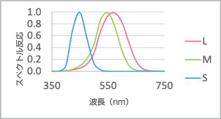 図1 人眼のスペクトル感度(感度がそれぞれのピークで正常化されています。)
