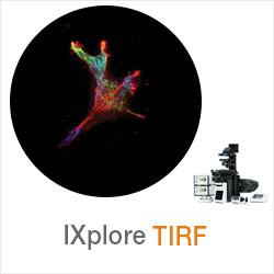 IXplore TIRF