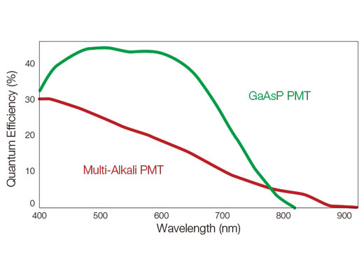 The GaAsP photomultiplier tube (PMT) incorporates up to four channels with 45% maximum quantum efficiency