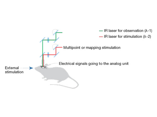 Multipoint or Mapping Stimulation