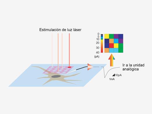 Mapas 3D de reacción por estimulación