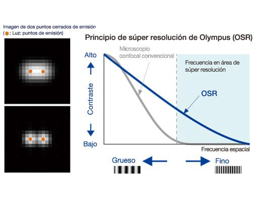 Principio OSR