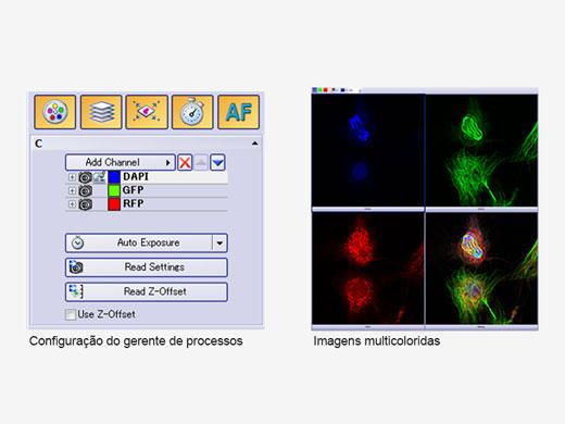 Formação de imagem multidimensional