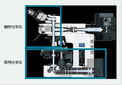 顕微鏡の光学系構成