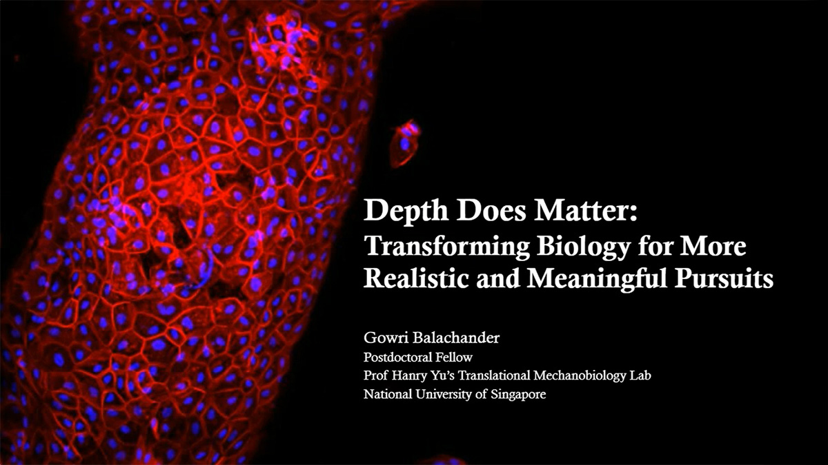 Depth Matters: Transforming Biology for More Realistic and Meaningful Pursuits
