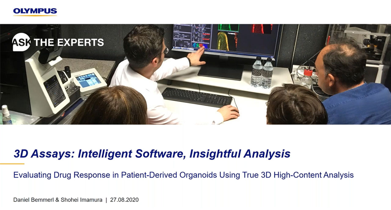 3D Assays: Intelligent Software, Insightful Analyses