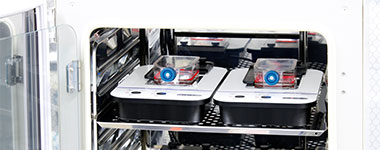 Figure 6. With one cell line per vessel, two CM20 monitors were placed in the incubator with the culture vessels