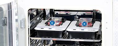 图6. 每个容器一个细胞系,并将两个CM20监控器与培养容器一起放置在培养箱中