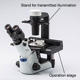 Figure 2. Inverted microscope for cell culture