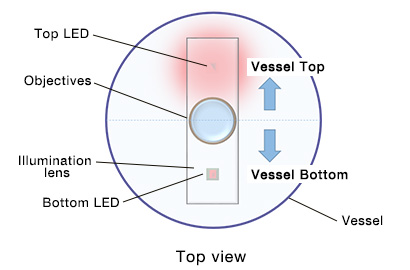 Figure 5. Configuration of epi-oblique illumination (side view)