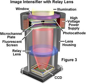 Digital Imaging in Optical Microscopy - Concepts in Digital Imaging