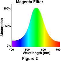 The Physics Of Light And Color Light Filtration Olympus
