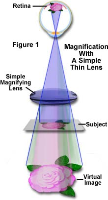 The Concept Of Magnification