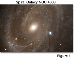 Image of the spiral galaxy 4603