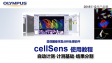 cellSens analysis-count and measure03-automatic count and measure-objects segmentation