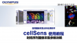 cellSens acquisition-process manager05-XYZ  and timelapse-explanation of time parameters