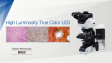 BX53:High Luminosity True Color LED