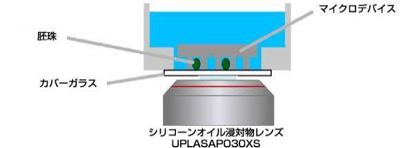 図7: シリコーンオイル浸対物レンズを用いたマイクロデバイスイメージングを描いた図