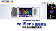 cellSens acquisition-one step to find focus (motorized Z stage)