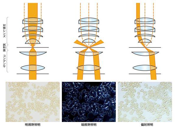 図3 照明による画像の見え方の違い