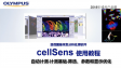 cellSens analysis-count and measure04-automatic count and measure-filter,parameters and display