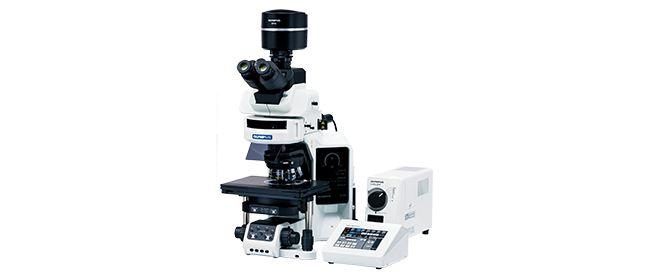 Upright Microscopes | Olympus Life Science